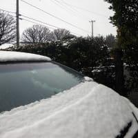 20-02-18 雨雪