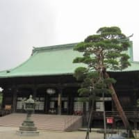 護国寺を散策