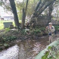 鈴谷川の調査