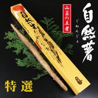 【お客様の声】自然薯一本もの|箱根湘南美味しんぼ倶楽部
