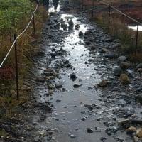 【大雪山国立公園・旭岳情報】 悪天候の後は・・・
