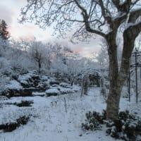 やまのうえの、令和、初の雪景色・・・