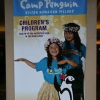 今ハワイ!~ゆうすけ、キャンプペンギンにご出勤~