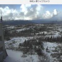 冴えなかったダイモンジソウと新雪の立山・剱岳