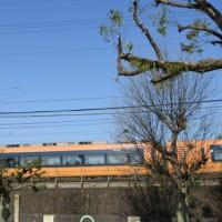 平成最後の4月に入りました。
