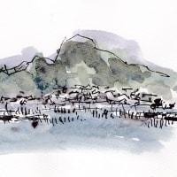 海苔竹の風景