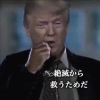 日本国籍の日本人に1人6億円が個人口座に入金されます!トランプ革命政権!本当だったら凄い?!トランプは地球の資源、財産をすべてに分配するとメッセージ!世界の銀行の財務執行責任者であり世界の大統領