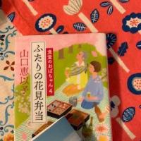 ふたりの花見弁当 食堂のおばちゃん(4)  2019-73