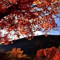 忍野村と富士五湖周辺