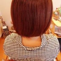 美髪チャージ☆「サイエンスアクア」導入しました