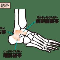 足首のねんざで傷めやすい部位