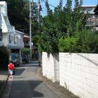桜坂 No.4 (中央区)