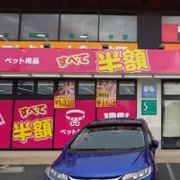 本日のランチはしゃぶ葉平野駅北店へ。10%引きクーポン利用で二人で1979円。新しく60歳以上の割引や豚バラ肉以外にカシワも食べられるように。
