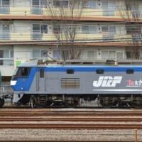 EF210-124 【鶴見駅脇:東海道貨物線線】 2021.2.26
