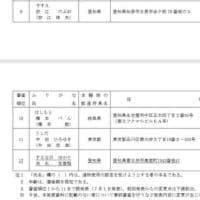 2019年 参議院愛知県選出議員選挙 立候補届出書類の事前審査状況