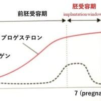 着床 (implantation)