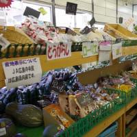 カレーYAさんからとなりの農家 地元野菜の店へ