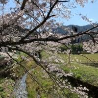 日本の春の原風景
