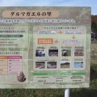 Sus☆テラス主催「エコツアー」ご報告