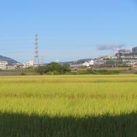 宝塚の街と空