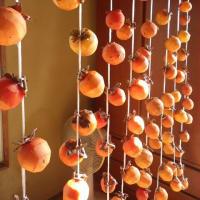 渋柿の皮を剥き、吊るして干柿作り