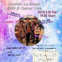 Soundo La Boum lrish & Gypsy Live