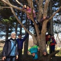 ぶなの森の春キャンプ3日目~最終日~