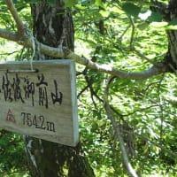 2019/06/13(金) 小佐波御前山 風はさわやか