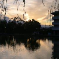 猿沢池~夕暮れ