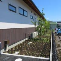 木曽川町クリニック様 植栽、造景空間工事