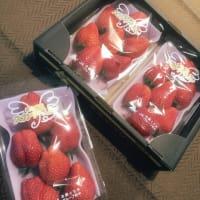 イチゴのキューブサンド