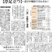 国語世論調査