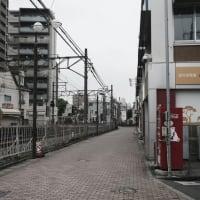 【市川真間】JR市川駅から京成線市川真間駅まで歩く Walked from Ichikawa Station to Ichikawa Mama Station. 【Osmo Pocket】
