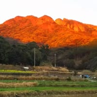 古田湾の朝景色