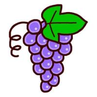 果物2(果物・野菜/ミニカット)
