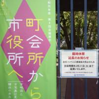 横浜日本通りの花壇2020/3/25