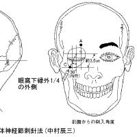 眼窩内刺針が刺激対象とするもの ver.2.2