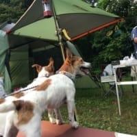 家族キャンプ6日目!