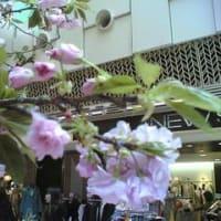 春旅2008-応援の声を受けいざ大阪へ