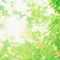 外出自粛ストレスによる光のエネルギー不足状態を癒すために☆