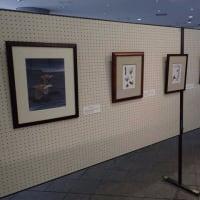 谷津干潟での展示が始まりました