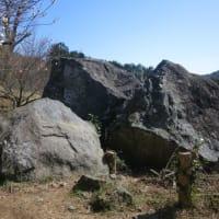 幕山ハイキング・梅の宴