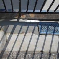 埋設されている浄水器らしき物で漏水で修理・・・千葉市