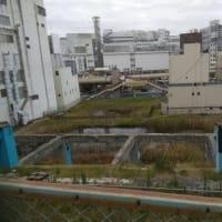 「 イバクイズ⑳ 茨城の景色 」