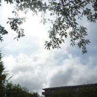 台風10号上陸…満月見れるかな? おまけで西武多摩川線 (*´∇`*)