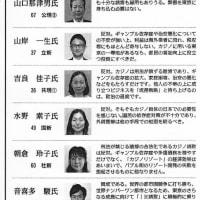 参院選、大切な一票を投票するべき政党の条件について2:東京には、カジノはいらない。東京選挙区の各候補者のカジノについての考え方