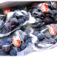 またまた秋の味覚到来(^^♪みずみずしい果汁ほとばしる爽やかなフルーツ「岡山県産 NEWピオーネ」