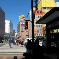 渡辺通り  (中央区)