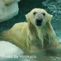 9月のイコロ君とデアちゃん♪(9月14日)