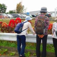 <東松戸病院裏手の道から南部公民館へ>